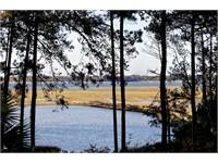 228 Spring Island Dr. thumbnail image 16