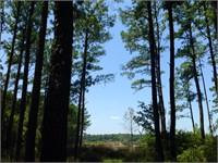 4 Shrimp Pond Road thumbnail image 5