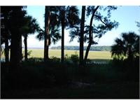 148 Spring Island Drive thumbnail image 3
