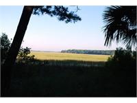 148 Spring Island Drive thumbnail image 7