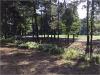 319 Spring Island Drive thumbnail image 8