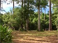 4 Pole Creek Lane thumbnail image 9