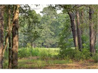 13 Bird Patch Trail thumbnail image 1