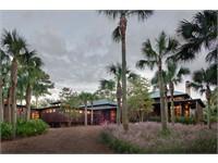Pine Island thumbnail image 2