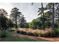 Pine Island thumbnail image 34