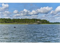 Pine Island thumbnail image 8
