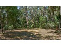 287 Spring Island Drive thumbnail image 14