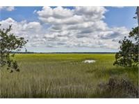 224 Spring Island Drive thumbnail image 1