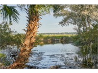 192 Spring Island Drive thumbnail image 1
