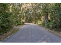 192 Spring Island Drive thumbnail image 6