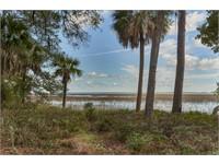 238 Spring Island Drive thumbnail image 2