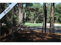 319 Spring Island Drive thumbnail image 1